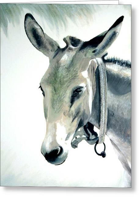 Donkey Greeting Card by Fiona Jack