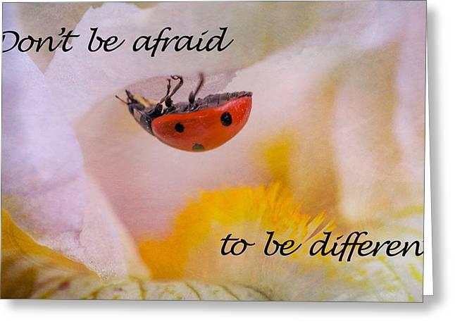Don't Be Afraid Greeting Card