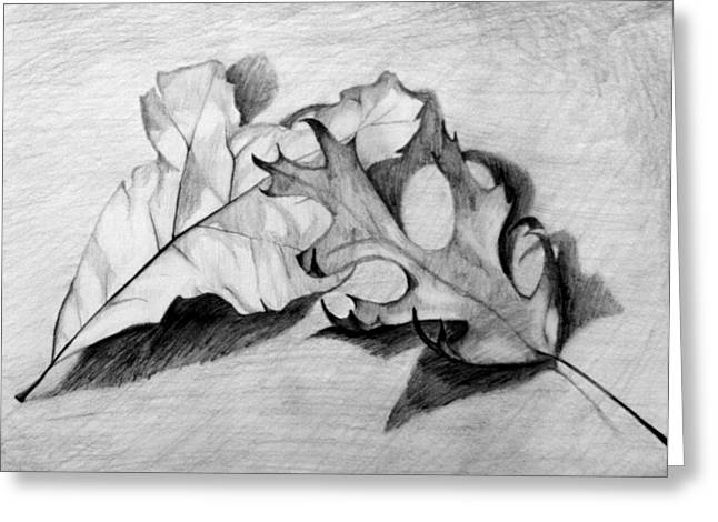 Greeting Card featuring the drawing Don't Leaf Me by Jean Haynes