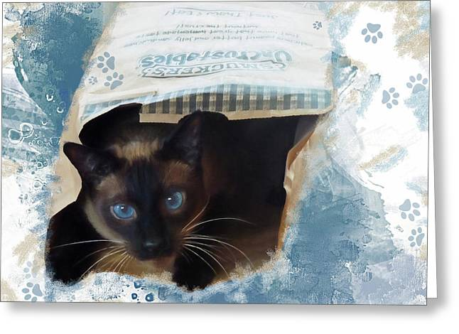 Don't Let The Cat Out Of The Bag Greeting Card