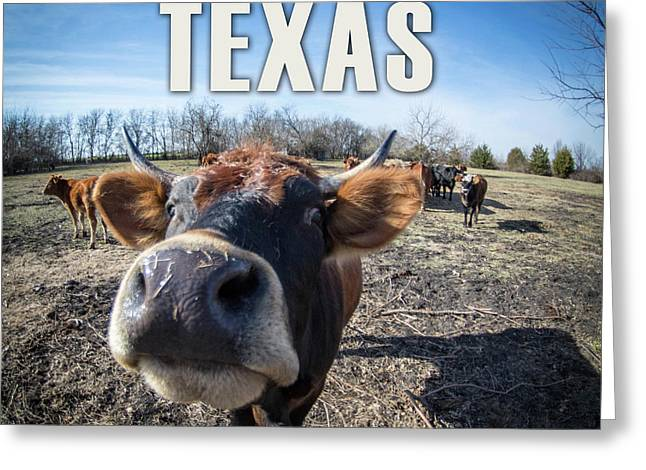 Don't Mess With Texas Greeting Card