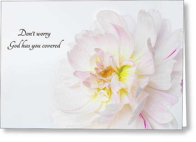 Greeting Card featuring the photograph Don't Worry by Mary Jo Allen