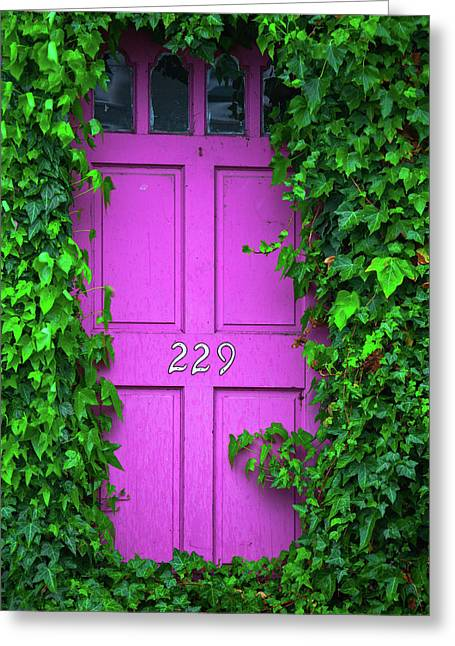 Door 229 Greeting Card by Darren White