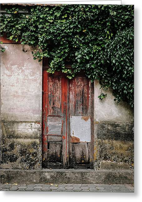 Greeting Card featuring the photograph Door Covered With Ivy by Marco Oliveira