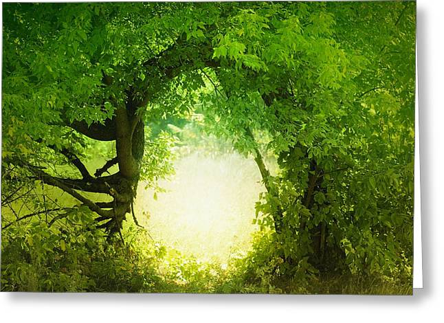 Door To The Fairy Land Greeting Card by Sergiy Trofimov