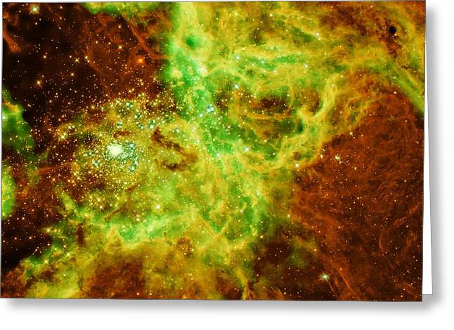 Doradus Nebula Greeting Card by American School