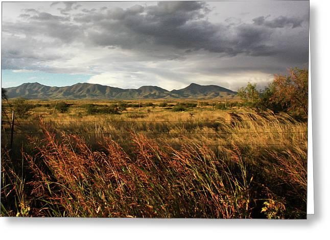 Dos Cabezas Grasslands Greeting Card