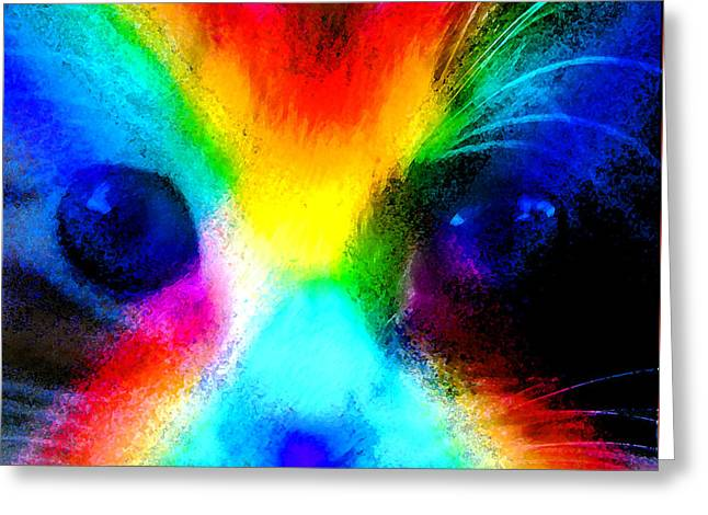 Double Rainbow Cat Greeting Card
