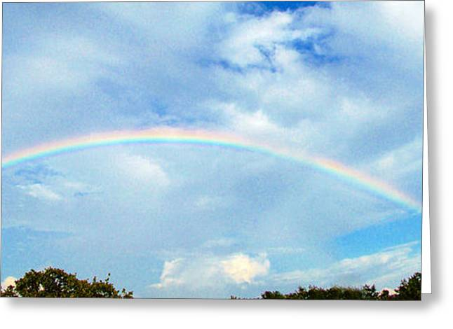 Double Rainbow Greeting Cards - Double Rainbow Greeting Card by Terry Anderson