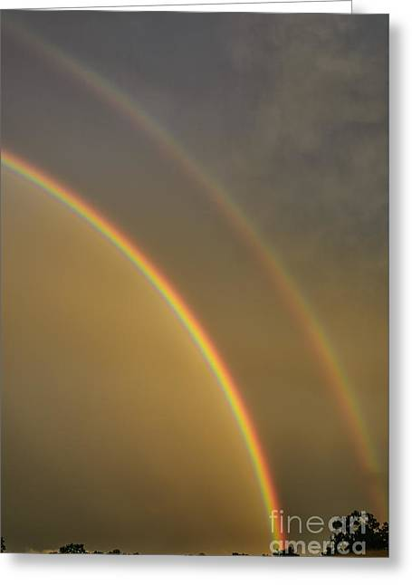 Double Rainbow  Greeting Card by Thomas R Fletcher