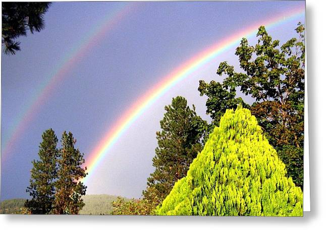 Double Rainbow Greeting Card by Will Borden