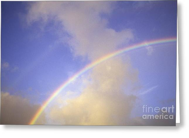 Double Rainbows Greeting Card by Carl Shaneff - Printscapes
