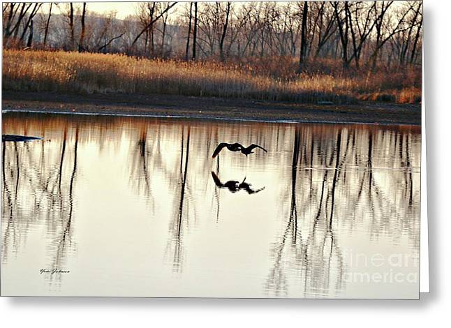 Double Reflection Greeting Card by Yumi Johnson