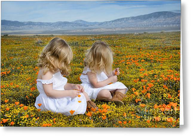 Double Take In A Poppy Field Greeting Card