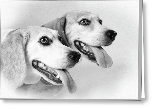 Double Trouble Greeting Card