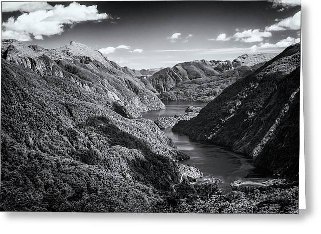Doubtful Sound New Zealand From Wilmot Pass Bw Greeting Card by Joan Carroll