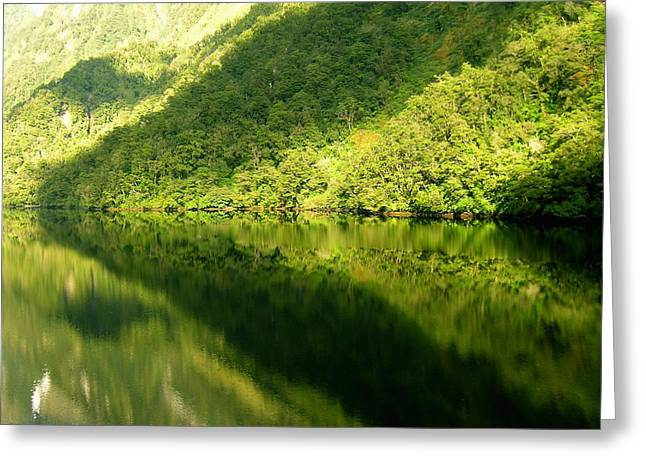 Doubtful Sound, New Zealand No. 4 Greeting Card