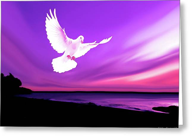 Dove Of My Dreams Greeting Card