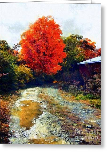 Greeting Card featuring the photograph Down A Country Road - Autumn by Janine Riley