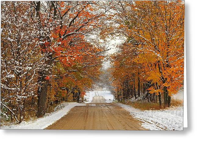 Down A Snowy Country Road In Autumn Greeting Card