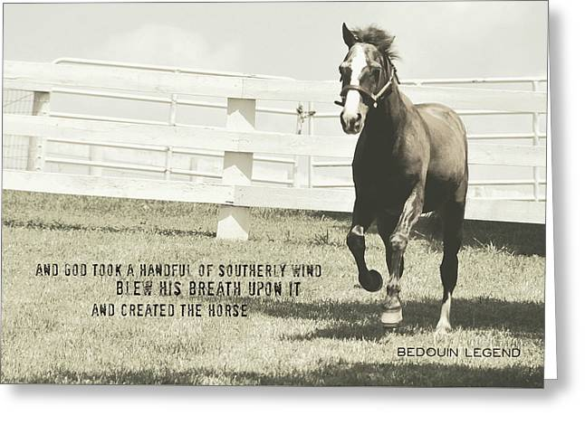 Down And Back Quote Greeting Card by JAMART Photography