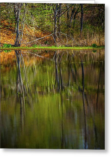 Down At Pecks Pond Greeting Card by Karol Livote