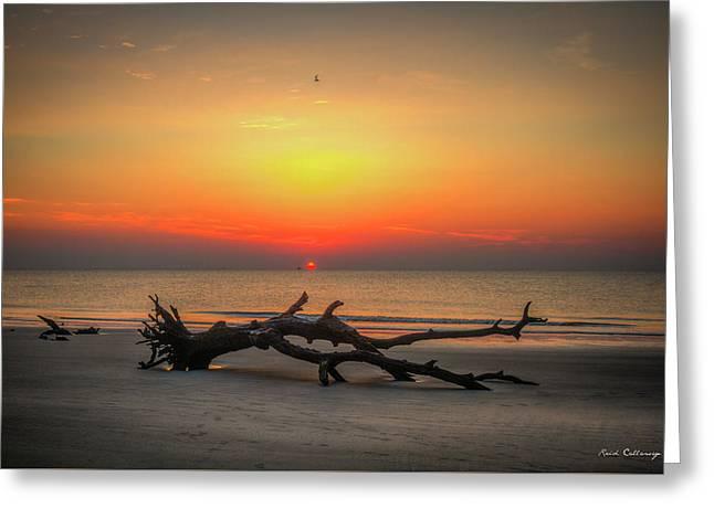 Down But Not Out Driftwood Beach Jekyll Island Georgia Art Greeting Card by Reid Callaway