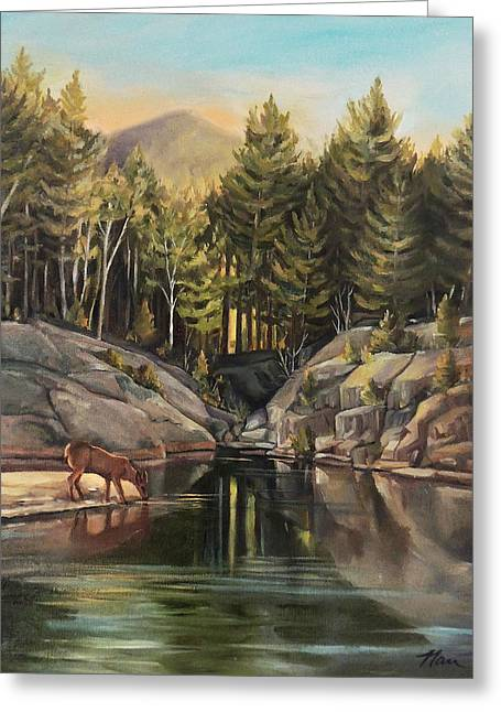 Down By The Pemigewasset River Greeting Card