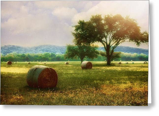 Down In The Valley Greeting Card by Tamyra Ayles