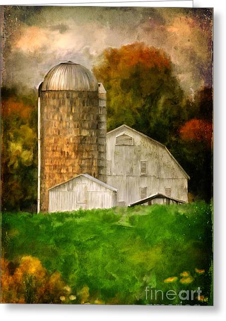 Down On The Farm Greeting Card by Lois Bryan