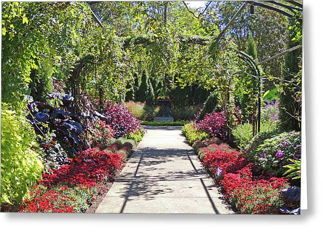Down The Garden Path Greeting Card