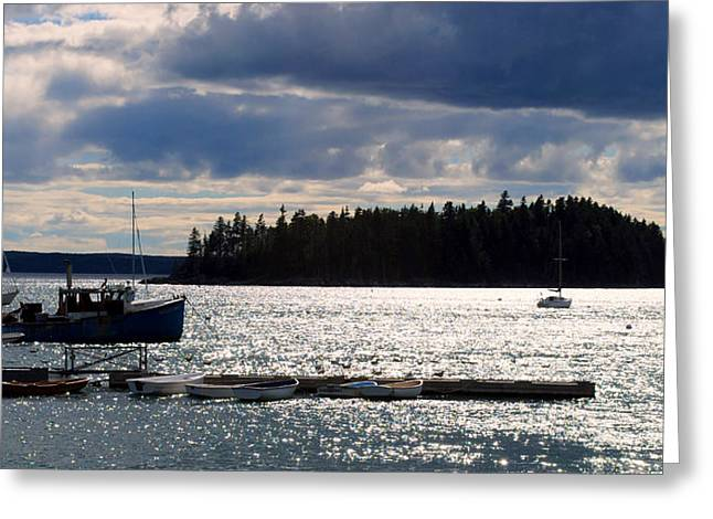 Downeast Reflections Greeting Card by Steven Scott