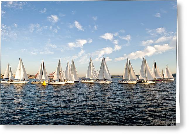 Downtown Sailing Series Greeting Card by Tom Dowd