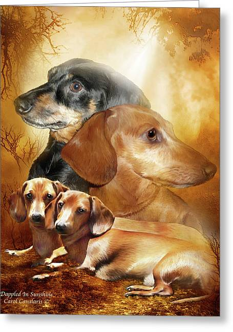 Doxies - Dappled In Sunshine Greeting Card