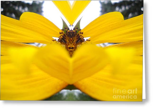 Dragon Sunflower Greeting Card