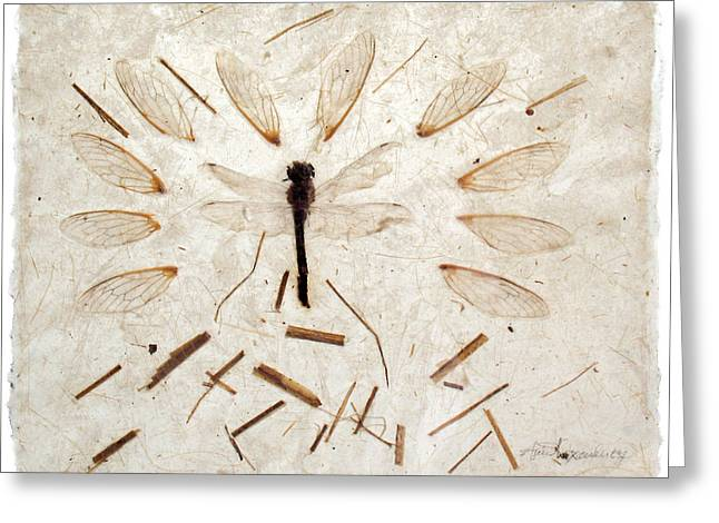 Dragonfly And Wings Greeting Card by Annie Alexander