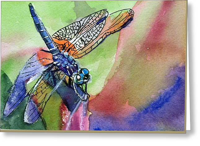 Dragonfly Of Many Colors Greeting Card