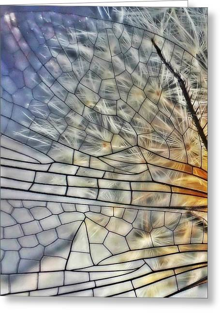 Dragonfly Wing Greeting Card