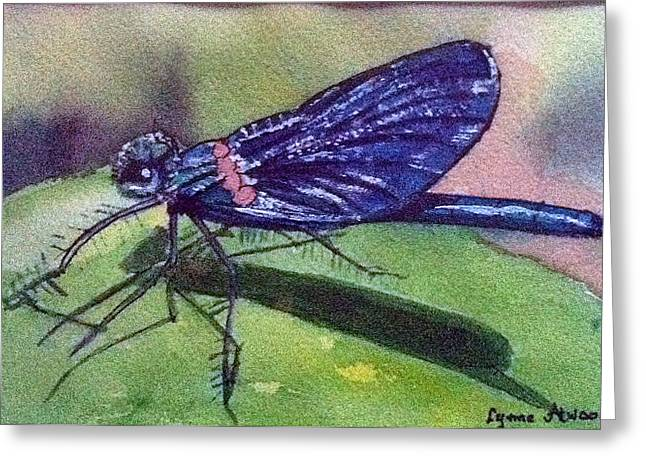 Dragonfly With Shadow Greeting Card