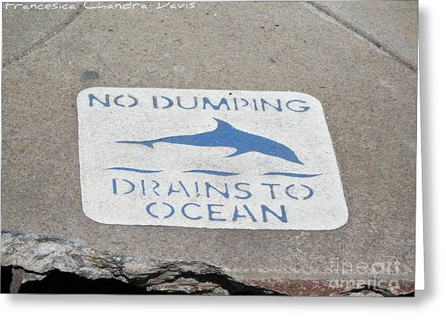Drains To Ocean Greeting Card by Sacred  Muse