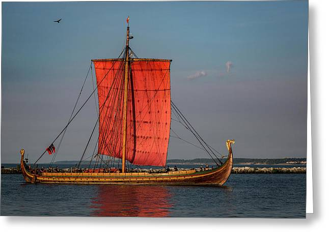Draken Harald Harfagre Greeting Card by Dale Kincaid