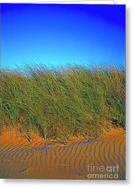 Drake's Island Beach Greeting Card