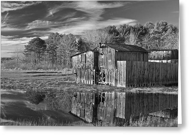 Old Maine Houses Greeting Cards - Drakes View Greeting Card by Steve Foster