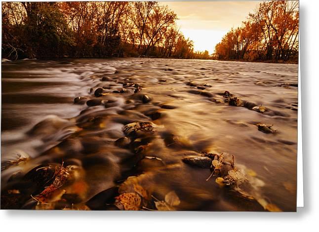 Dramatic Autumn Sunrise Along Boise River In Boise Idaho Greeting Card by Vishwanath Bhat