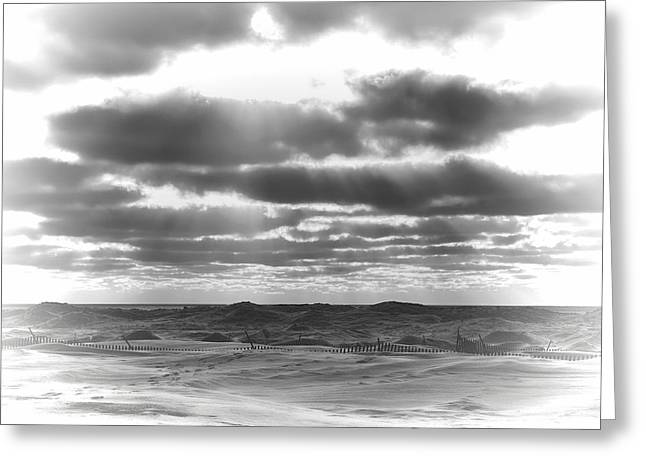 Dramatic Beachscape Greeting Card by Dan Sproul
