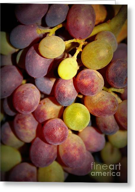 Dramatic Grapes Greeting Card by Carol Groenen