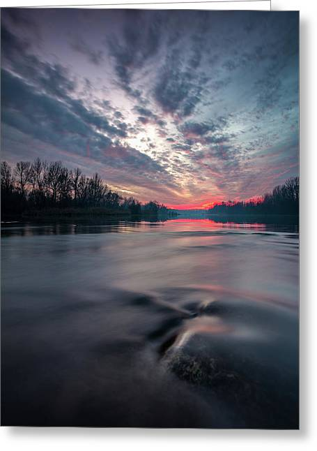 Drava Greeting Card by Davorin Mance