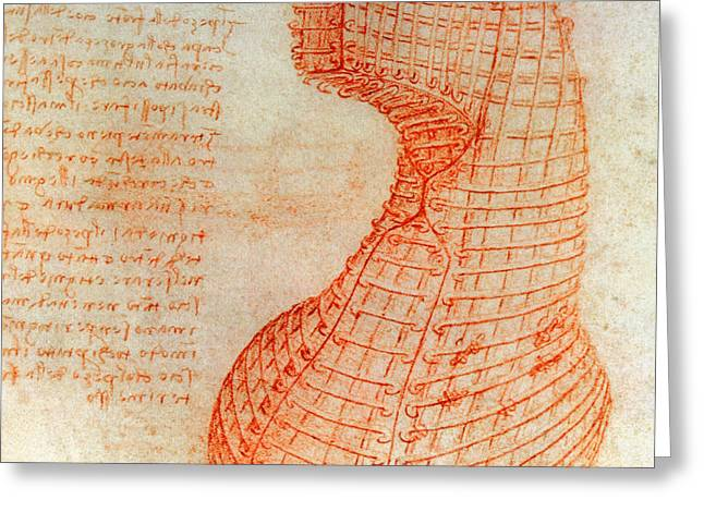 Drawing Of The Ironwork Casting Mould For The Head Of The Sforza Horse Greeting Card by Leonardo Da Vinci