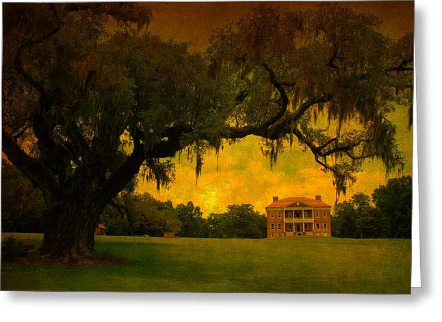 Drayton Hall Plantation In Charleston Greeting Card by Susanne Van Hulst