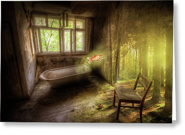 Dream Bathtime Greeting Card by Nathan Wright